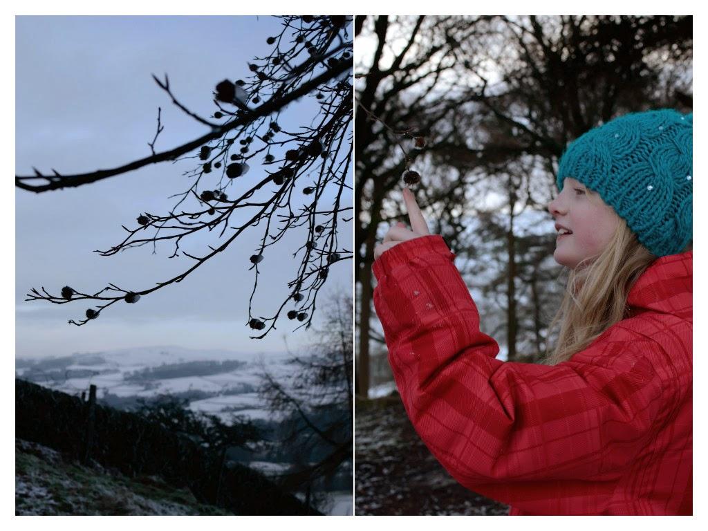 winter14e.jpg