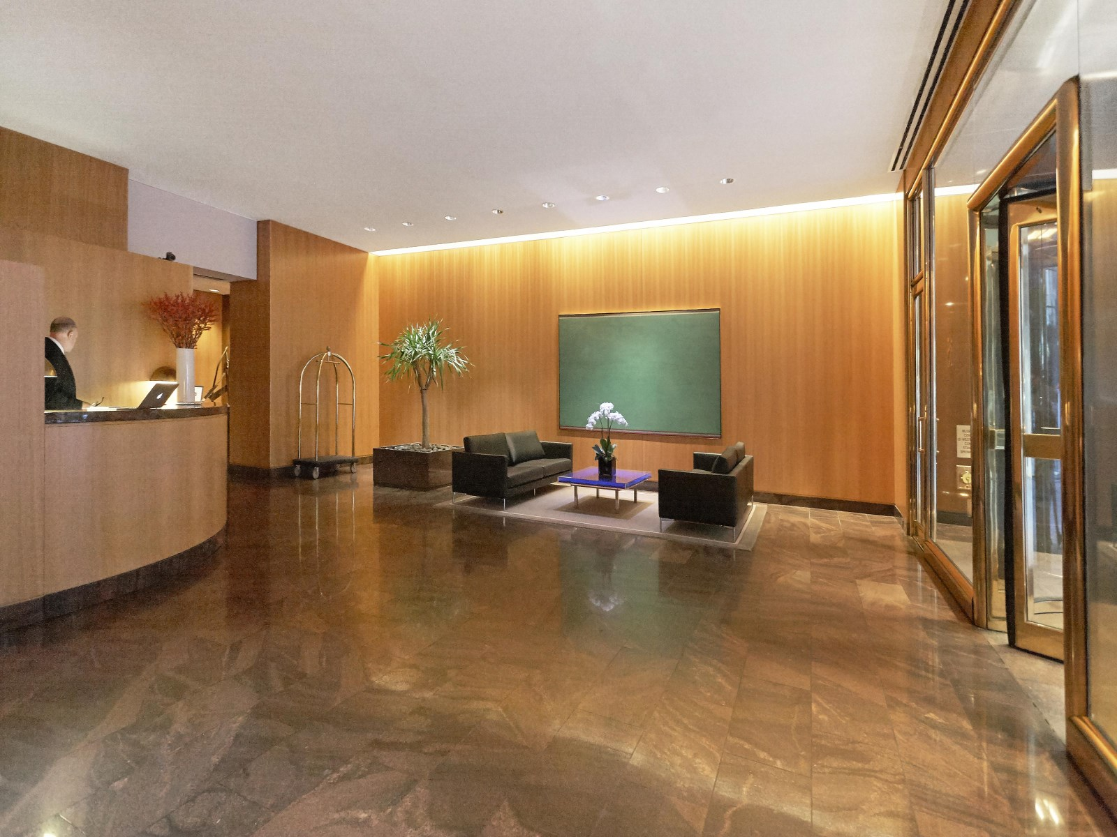 Luxury Apartment NYC_ 15 West 53rd Street5.jpg