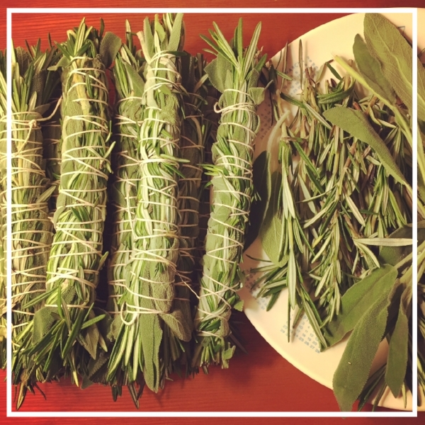 Garden Sage and Rosemary smudge sticks
