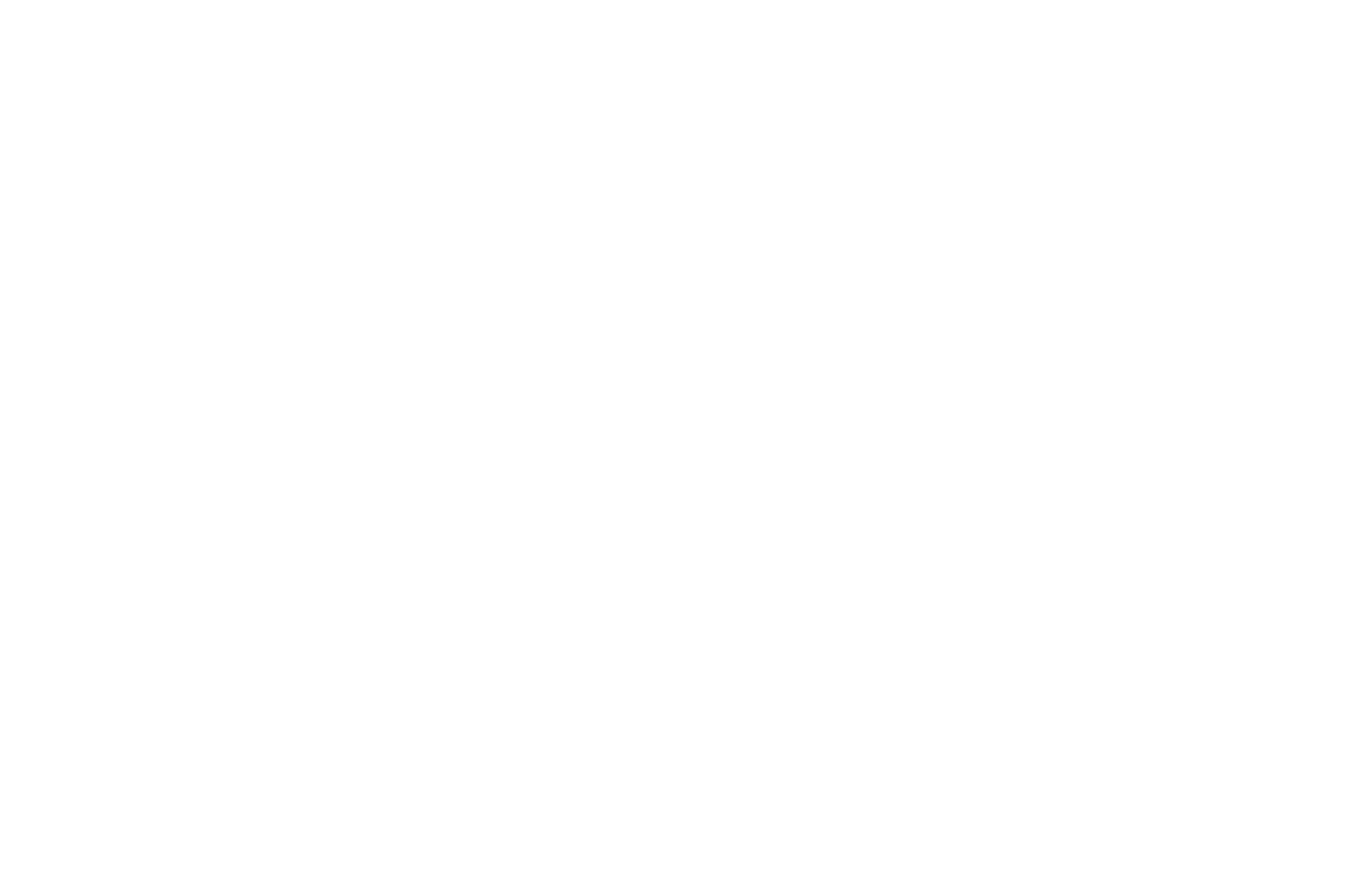 OFFICIAL SELECTION - Denver Underground Film Festival - 2019.png