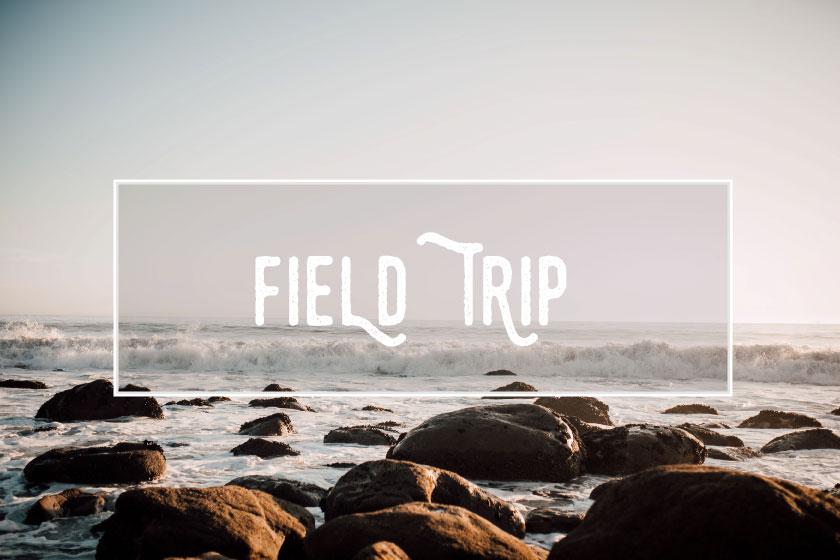 fieldtrip2.jpg