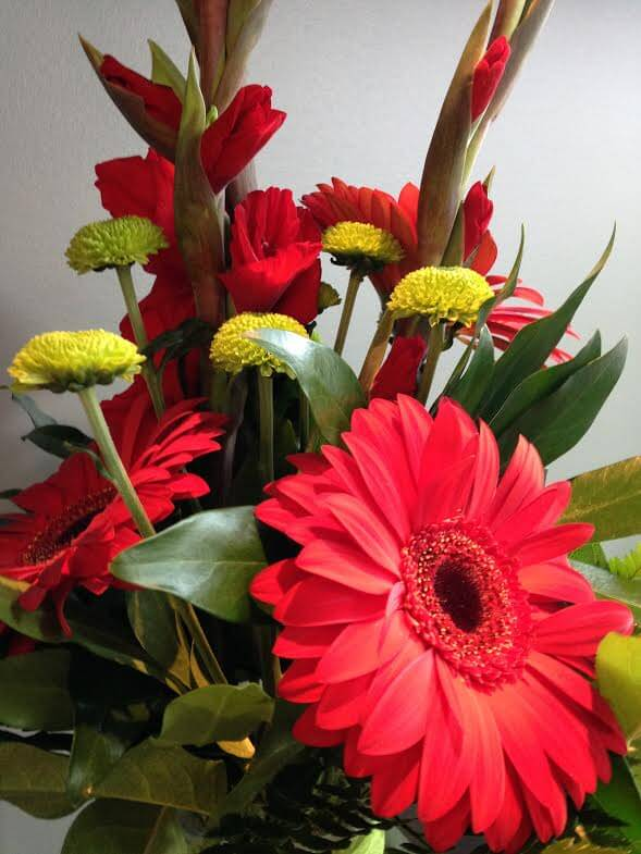 Red flowers for mom