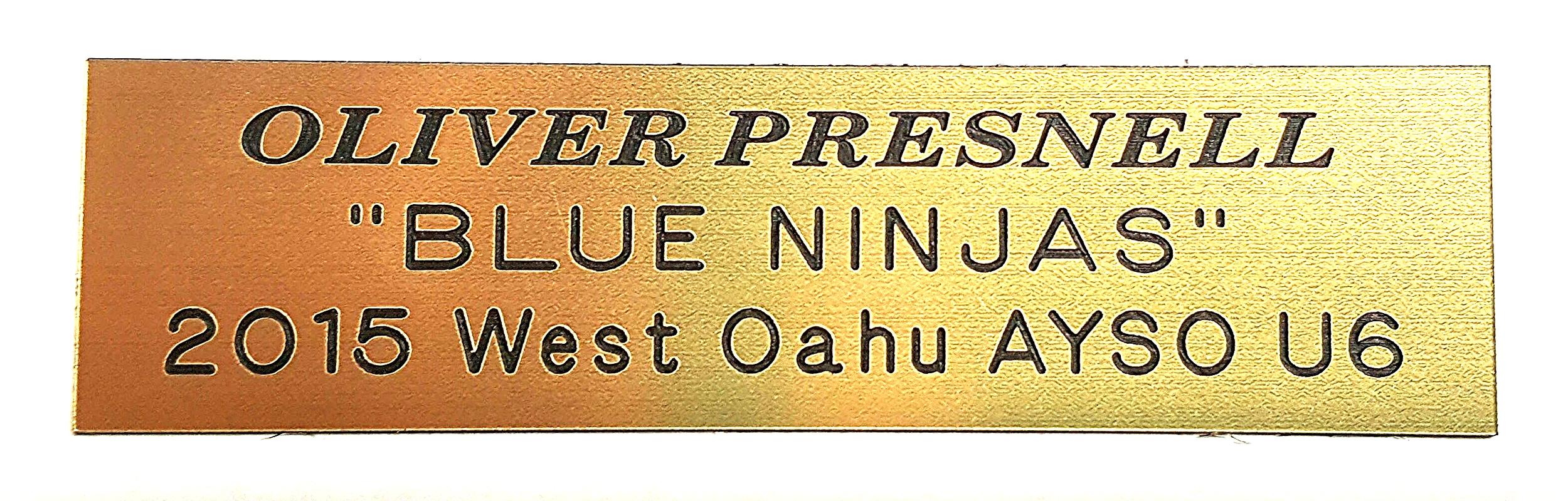 Trophy Engraving Plate Sample