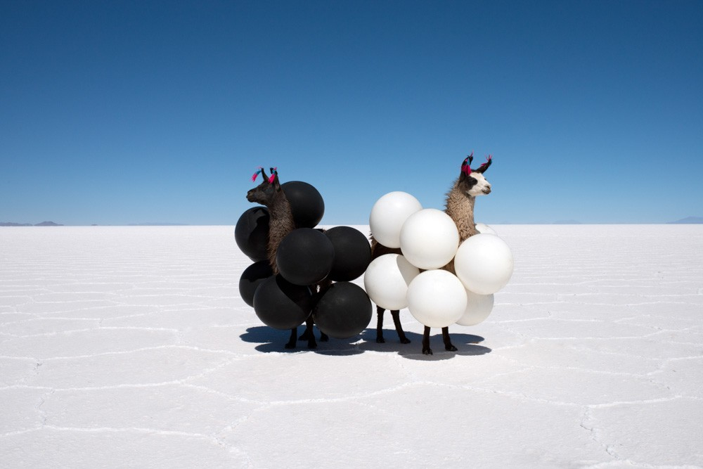 Llama_Black_and_White_Balloons_4.jpg