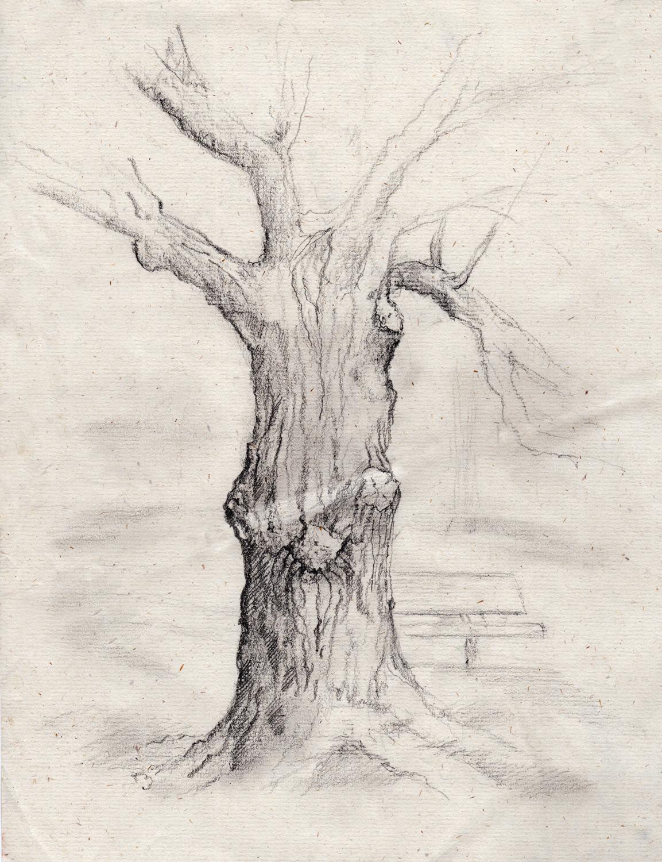 drawing-rendering-tree.jpg
