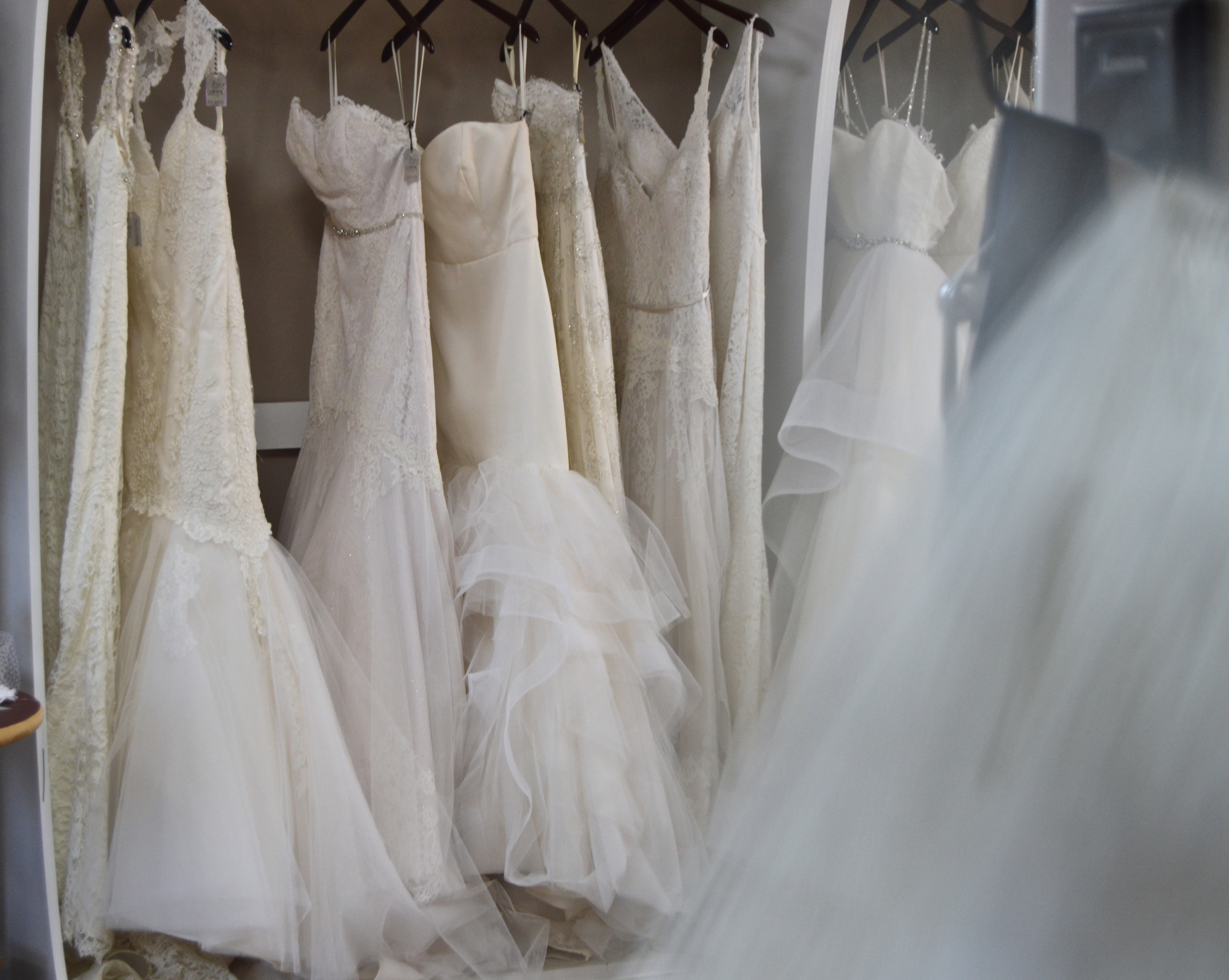 Ivory and Beau Bridal Shop