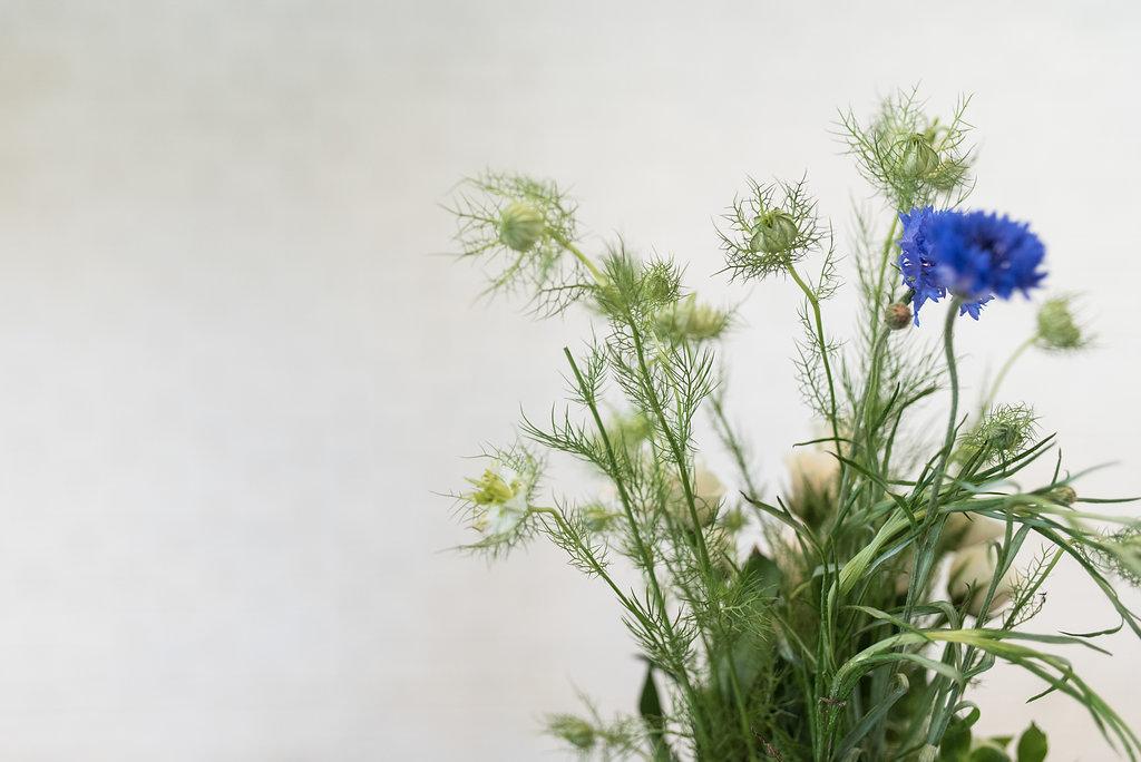 cornflower-floral-design