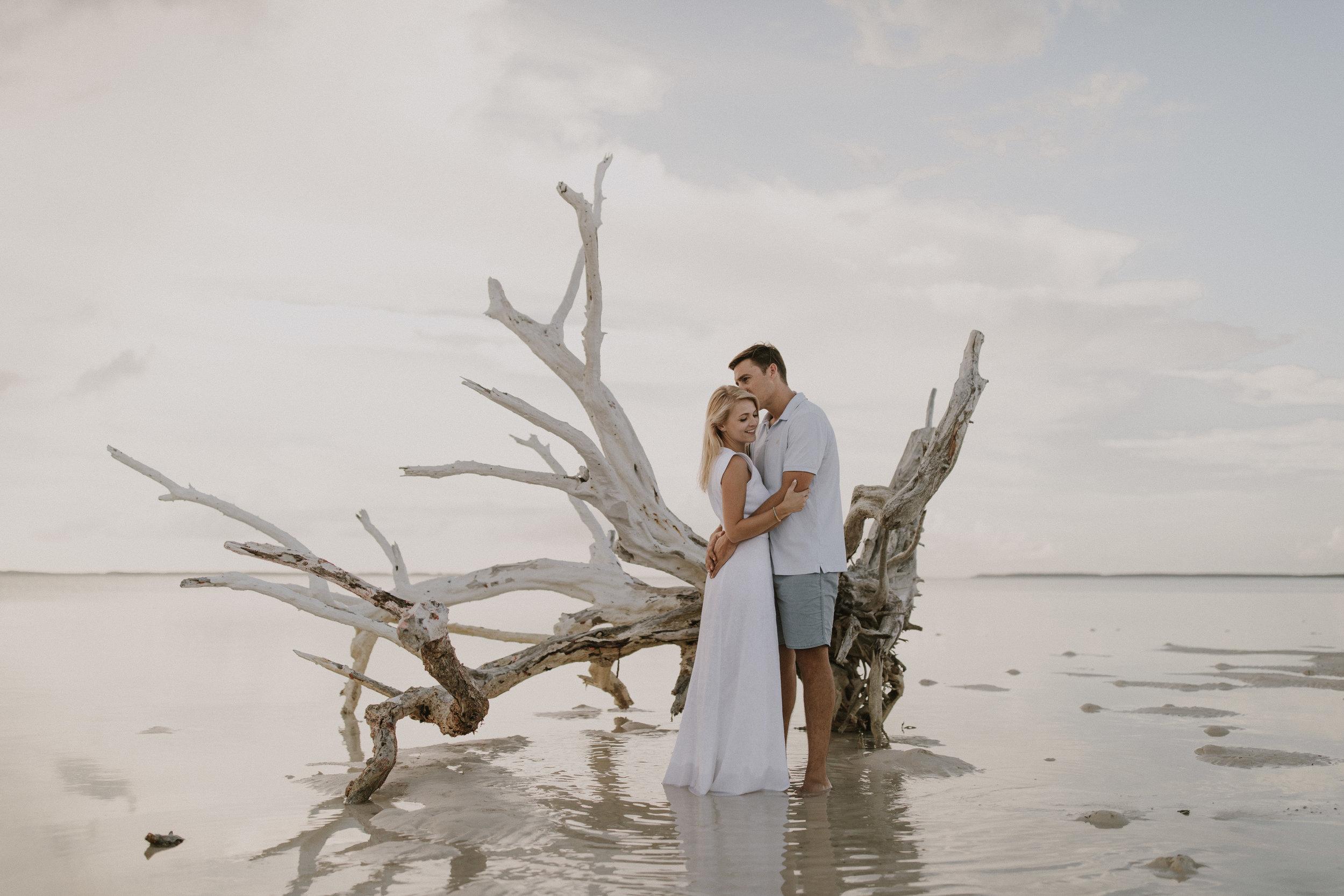harbour-isalnd-bahamas-driftwood