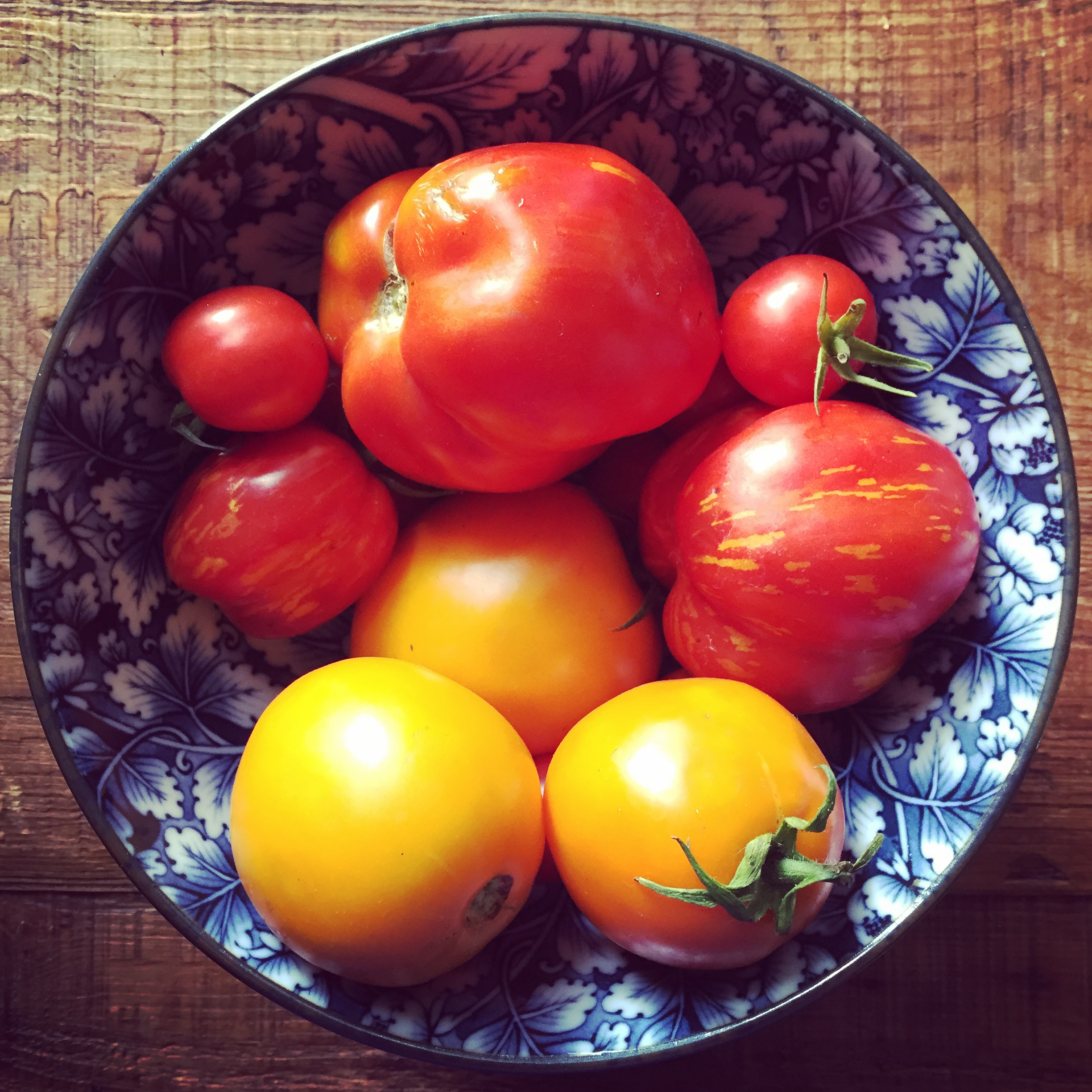 Organic tomatoes from our garden.