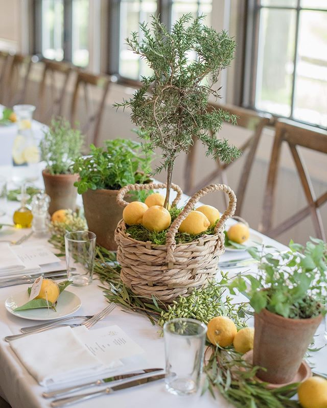 Reliving a perfect 🍋👶🏻 shower with some preview photos. cc @linpernille @connectthedotsevents
