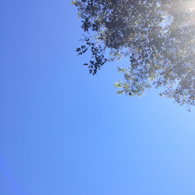 fall skies | madeline made