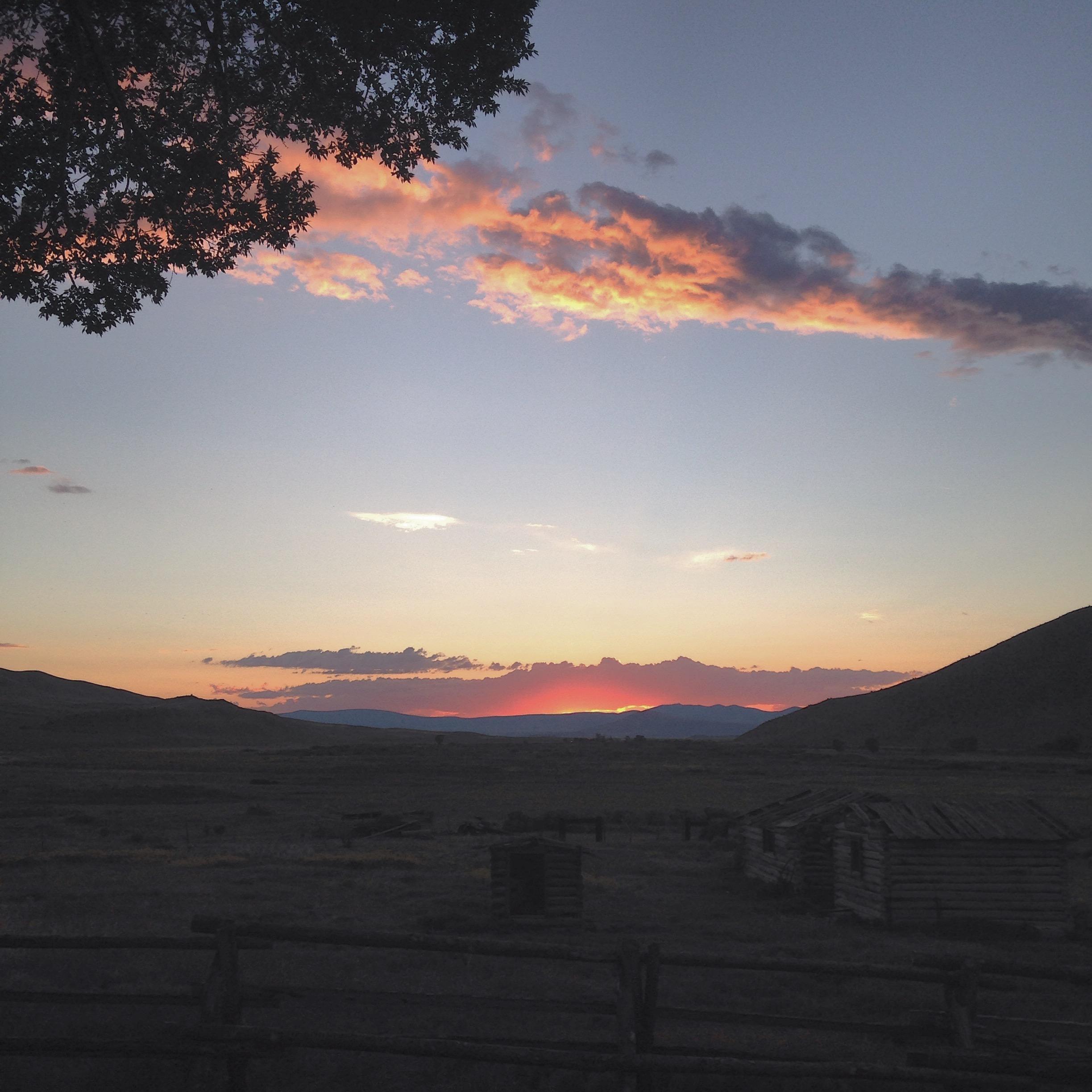 montana | madeline made
