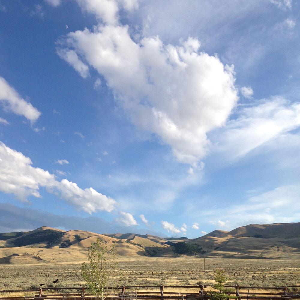 montana farmhouse icon.jpg
