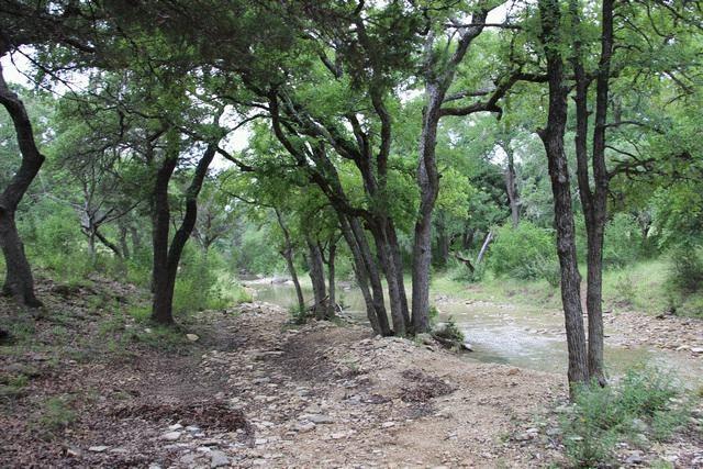 path to creek2.jpg