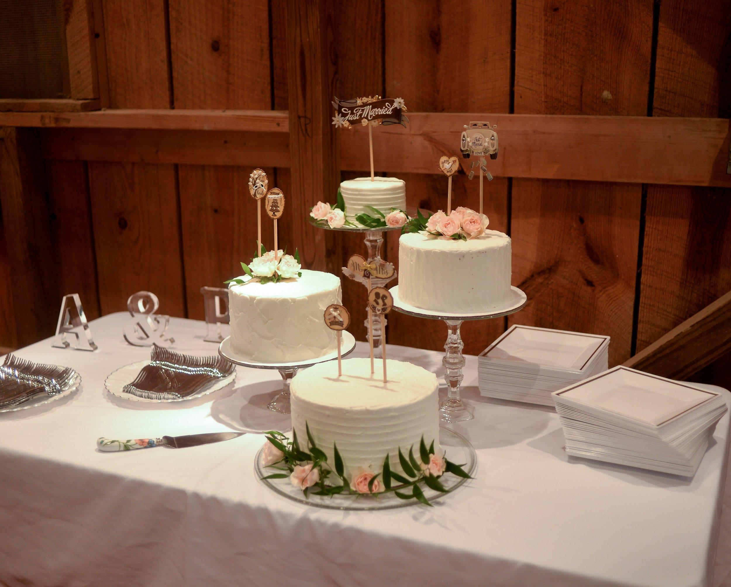 just married cake.jpg