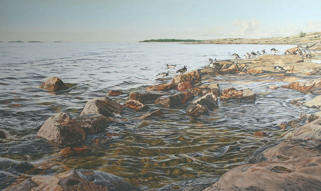 Geese on the Rocks - Oil on linen