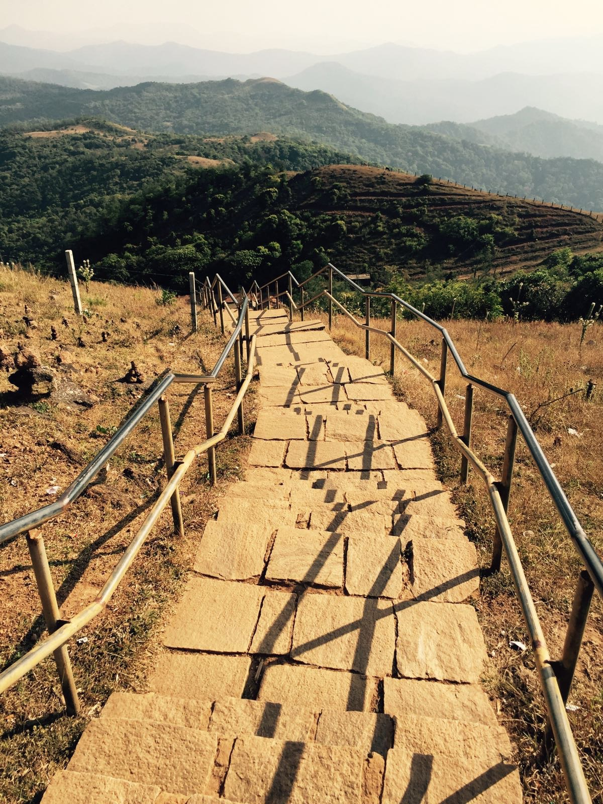 300 steps to the top. Never skip legs day.