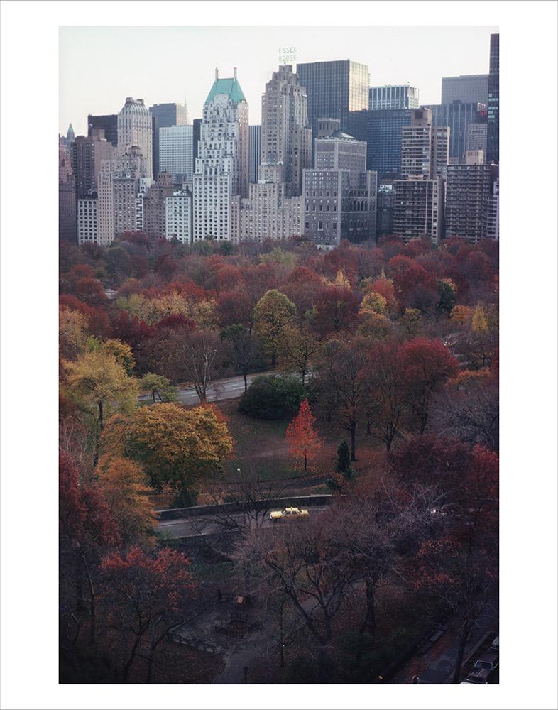 Central Park 02_RTP.jpg