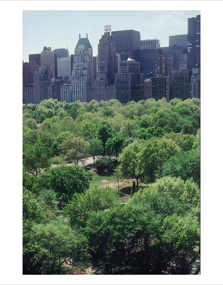 Central Park 03_RTP.jpg