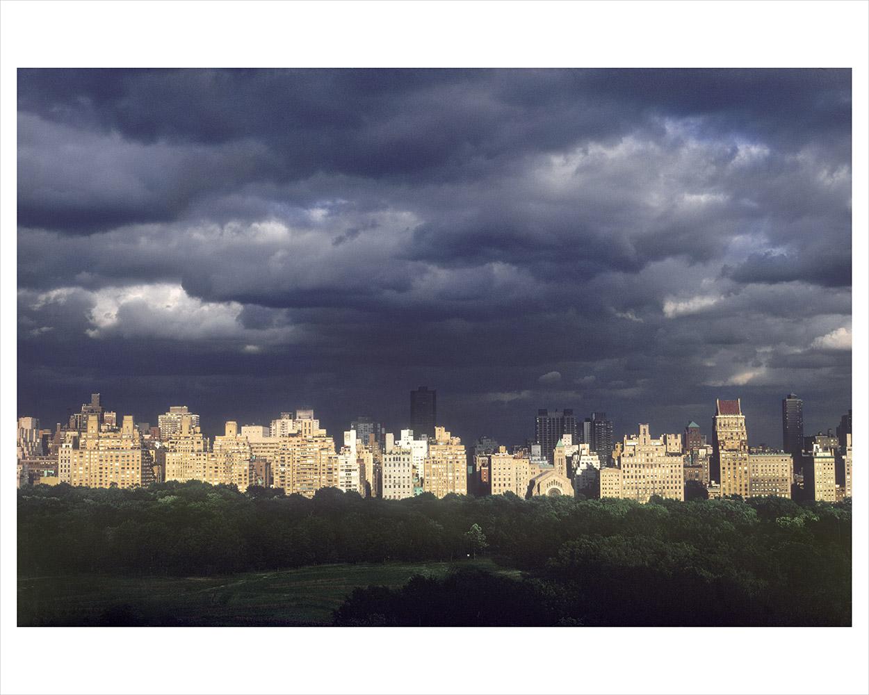 Central Park 04_3_RTP.jpg