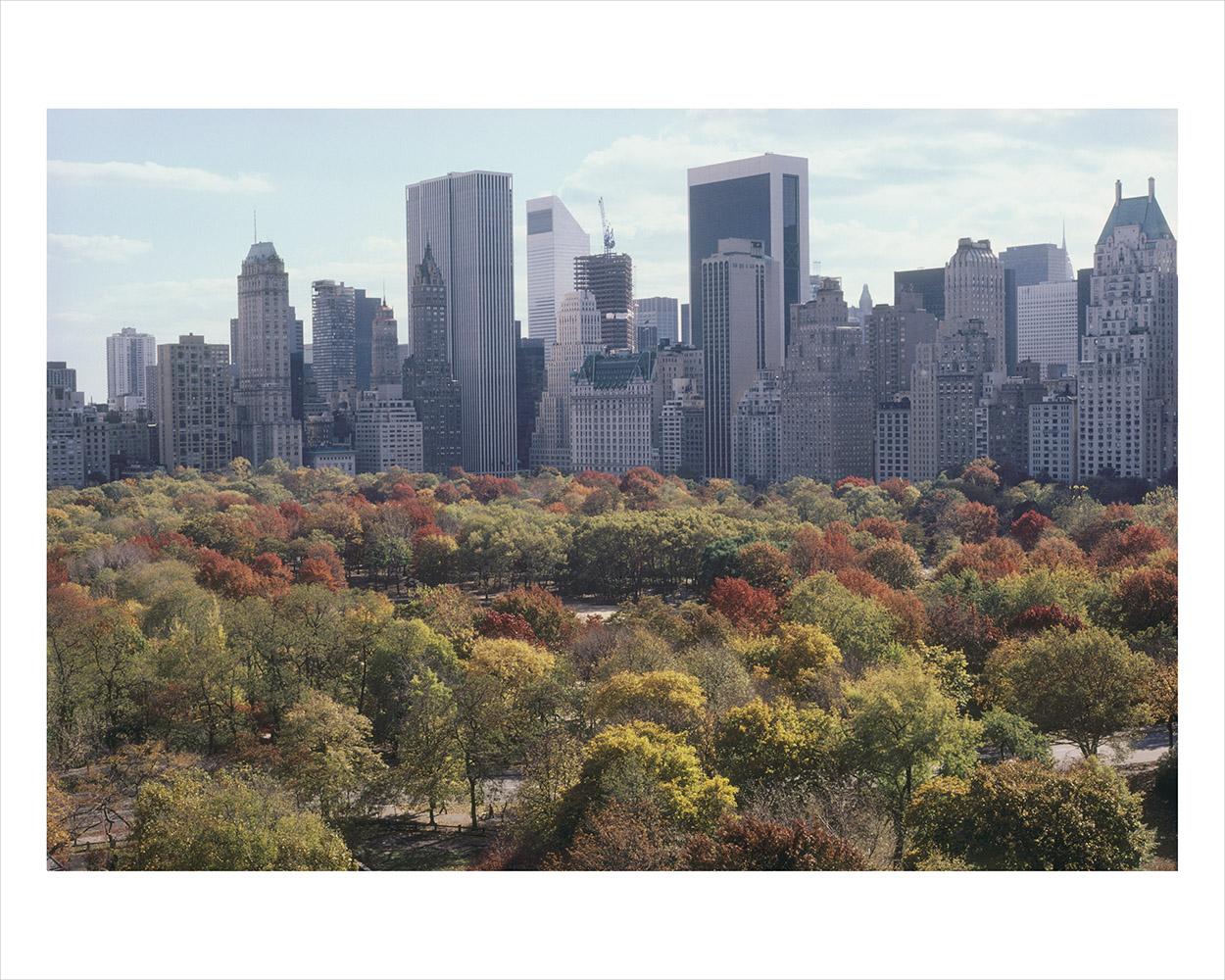Central Park_2_RTP.jpg