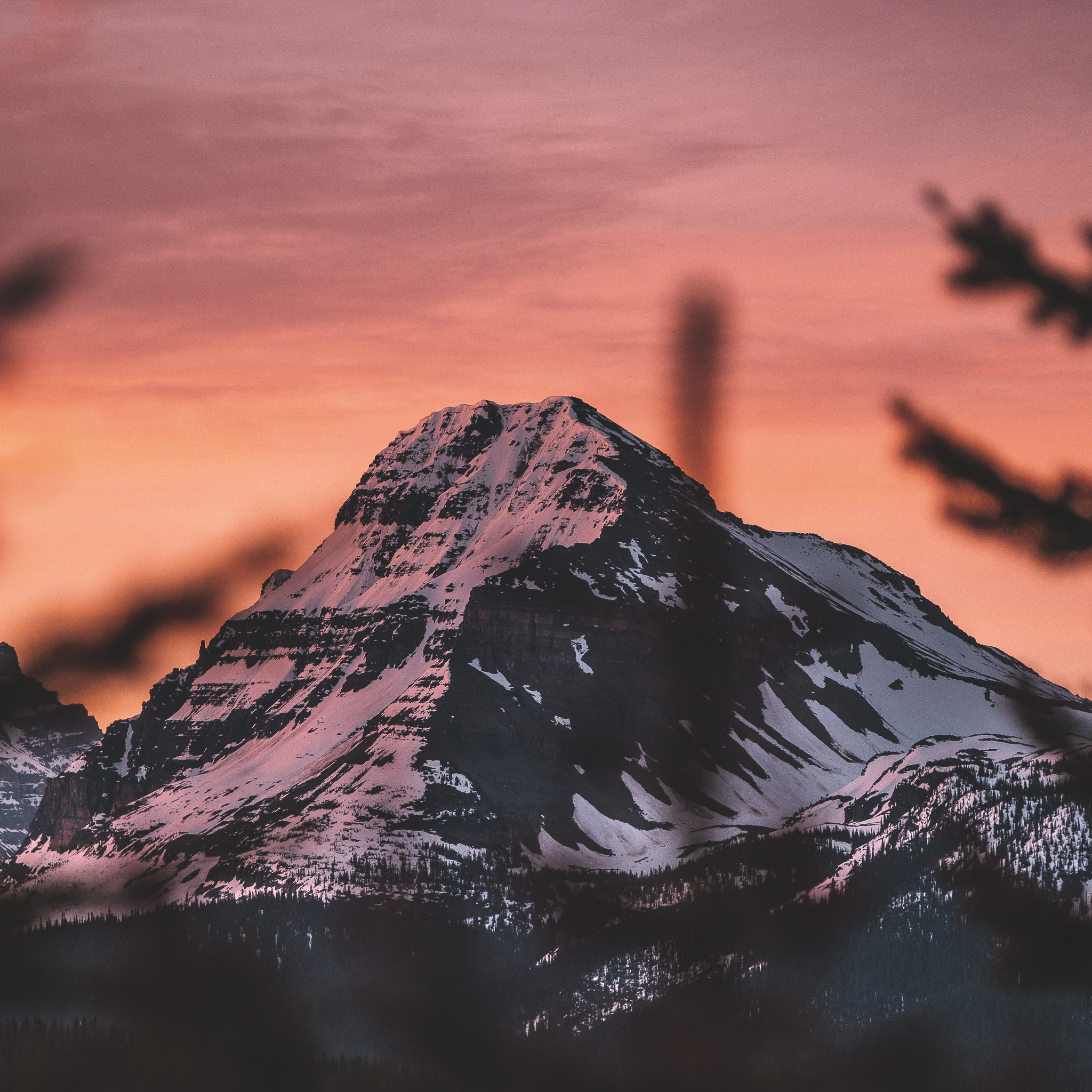 Presets - Edits for any occasion