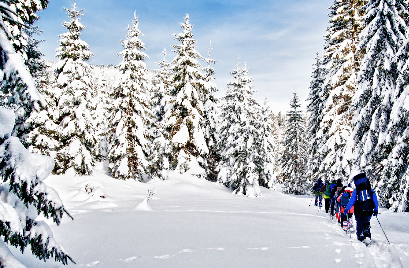 Snowshoe guided tour through the mountain forest at one of the local mountains in Vancouver