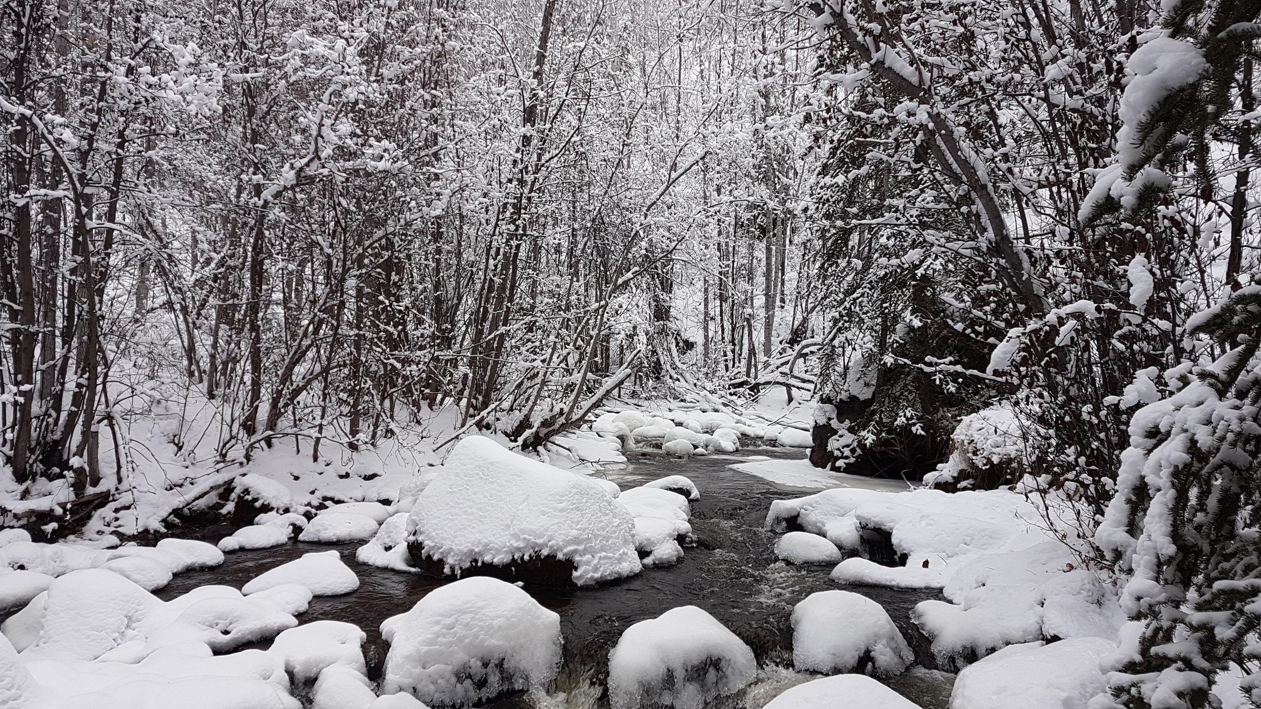 A snowy winter paradise