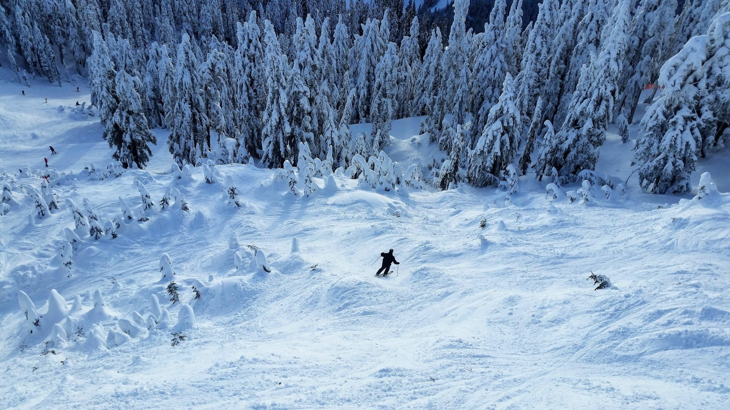 Enjoying a mogul run at the local mountains in Vancouver