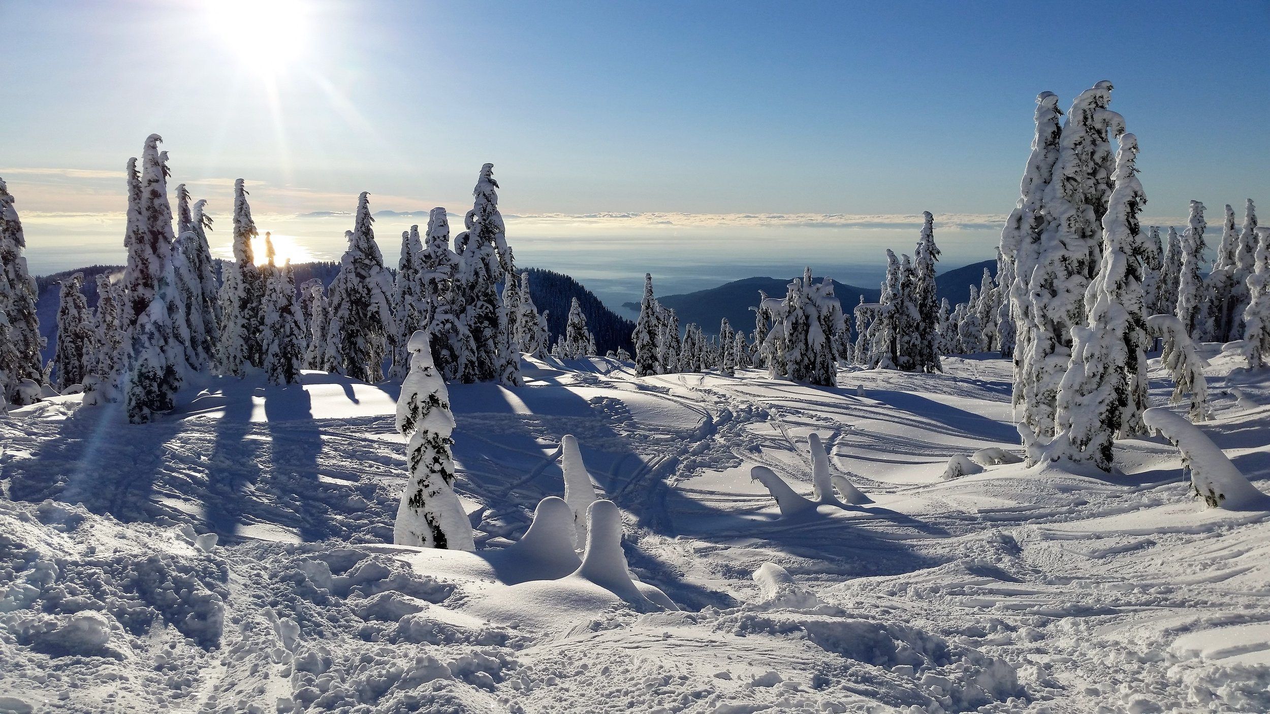 Skiing and Snowboarding in freshly fallen snow
