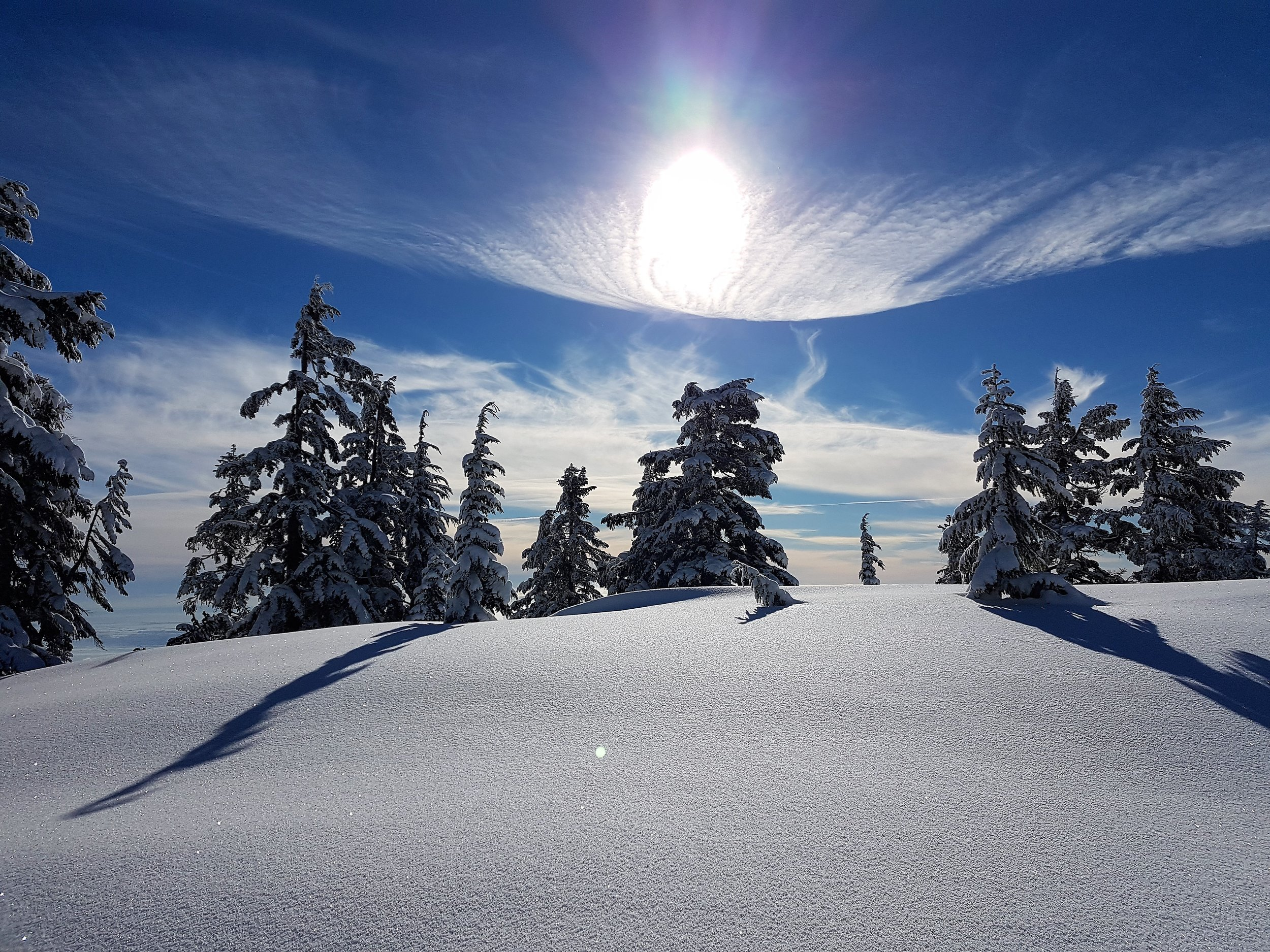 Fresh powder has arrived in Vancouver