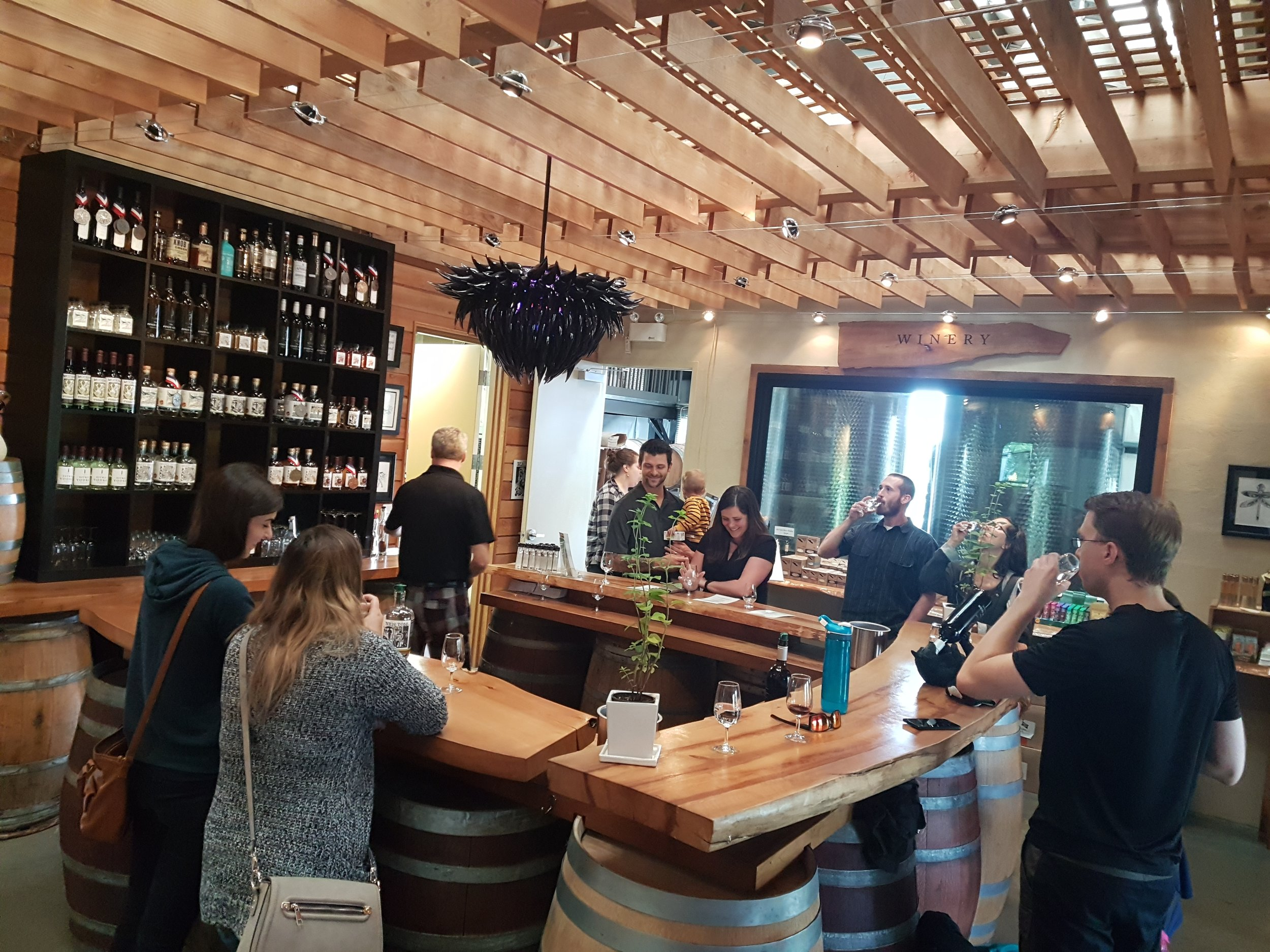 Enjoying some of the local wines at Devine Vineyards after a day in the saddle!
