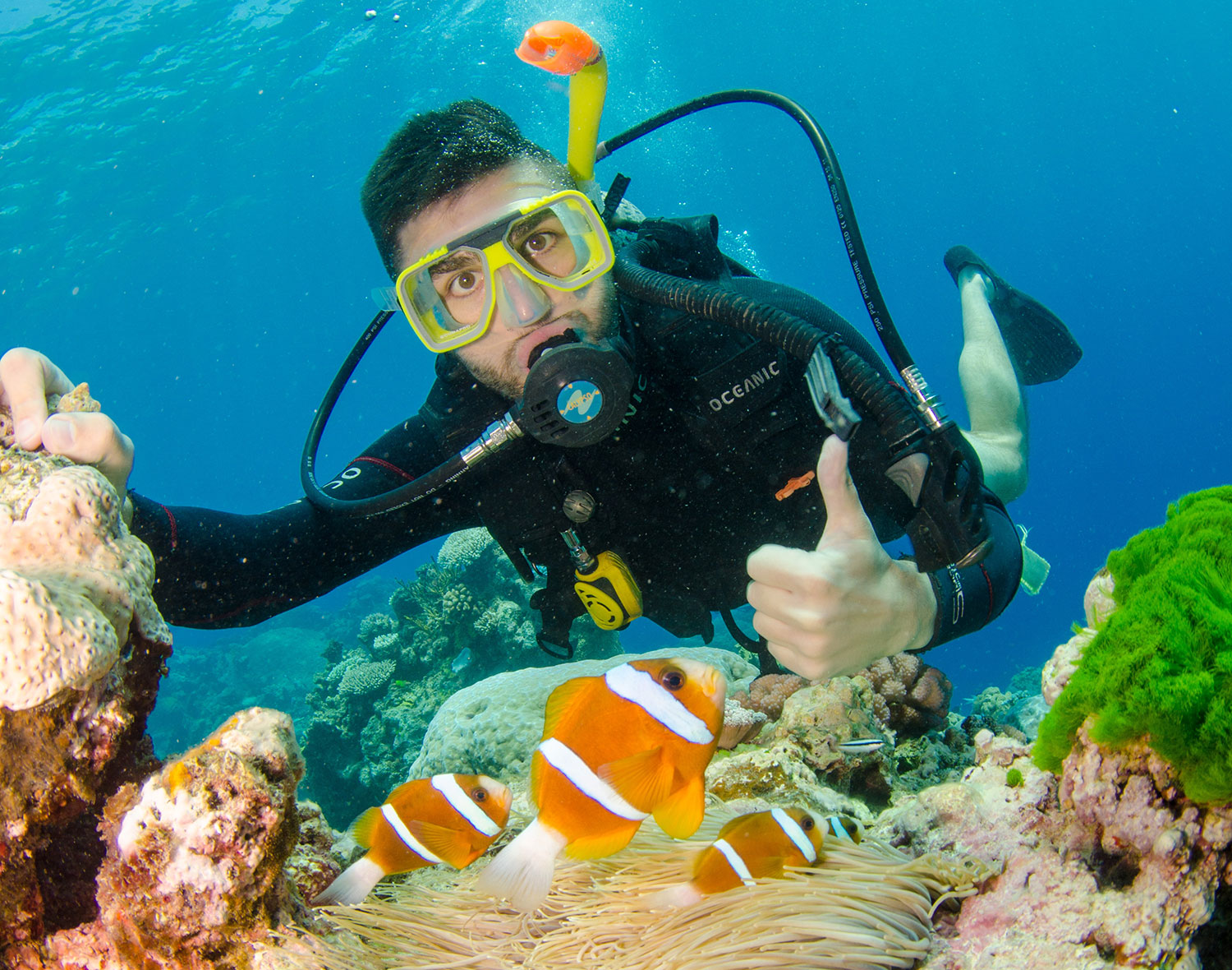 great-barrier-reef-nomad-and-camera.jpg