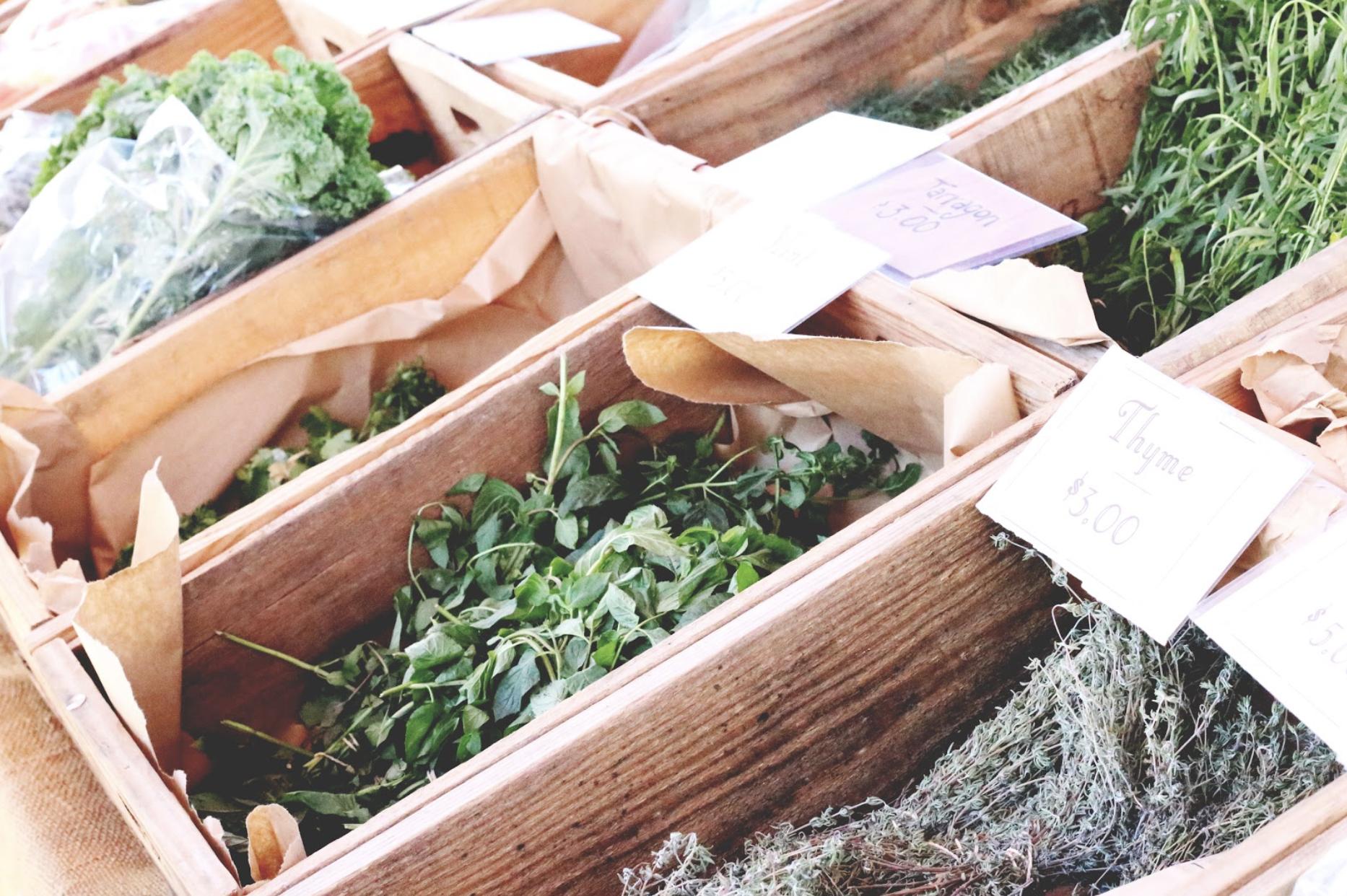 Herbs at the Kelowna Farmers' Market