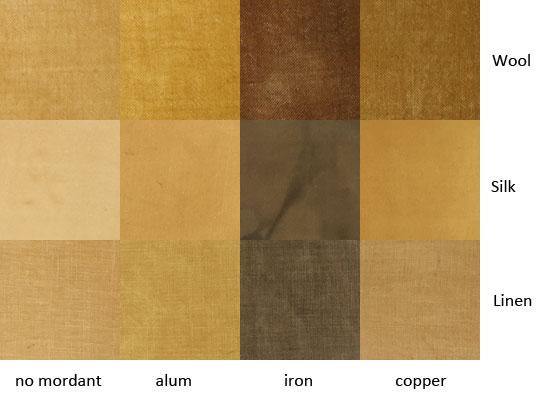 eucalyptus-approximans-bark.jpg