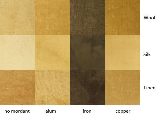eucalyptus-albens-bark.jpg