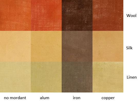 eucalyptus-diversicolor-leaves.jpg