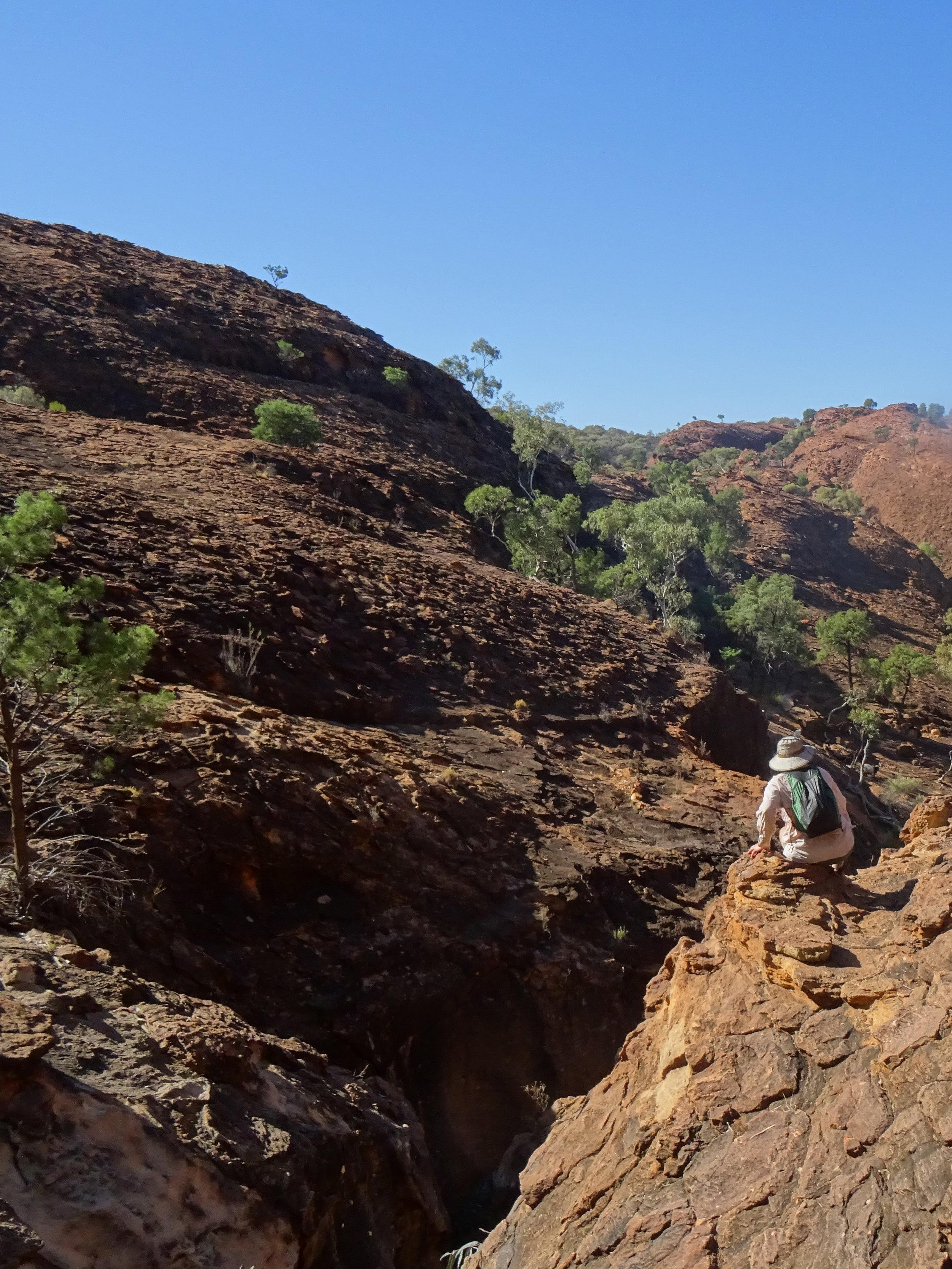 Mutawintje DSC09686 NSW.JPG