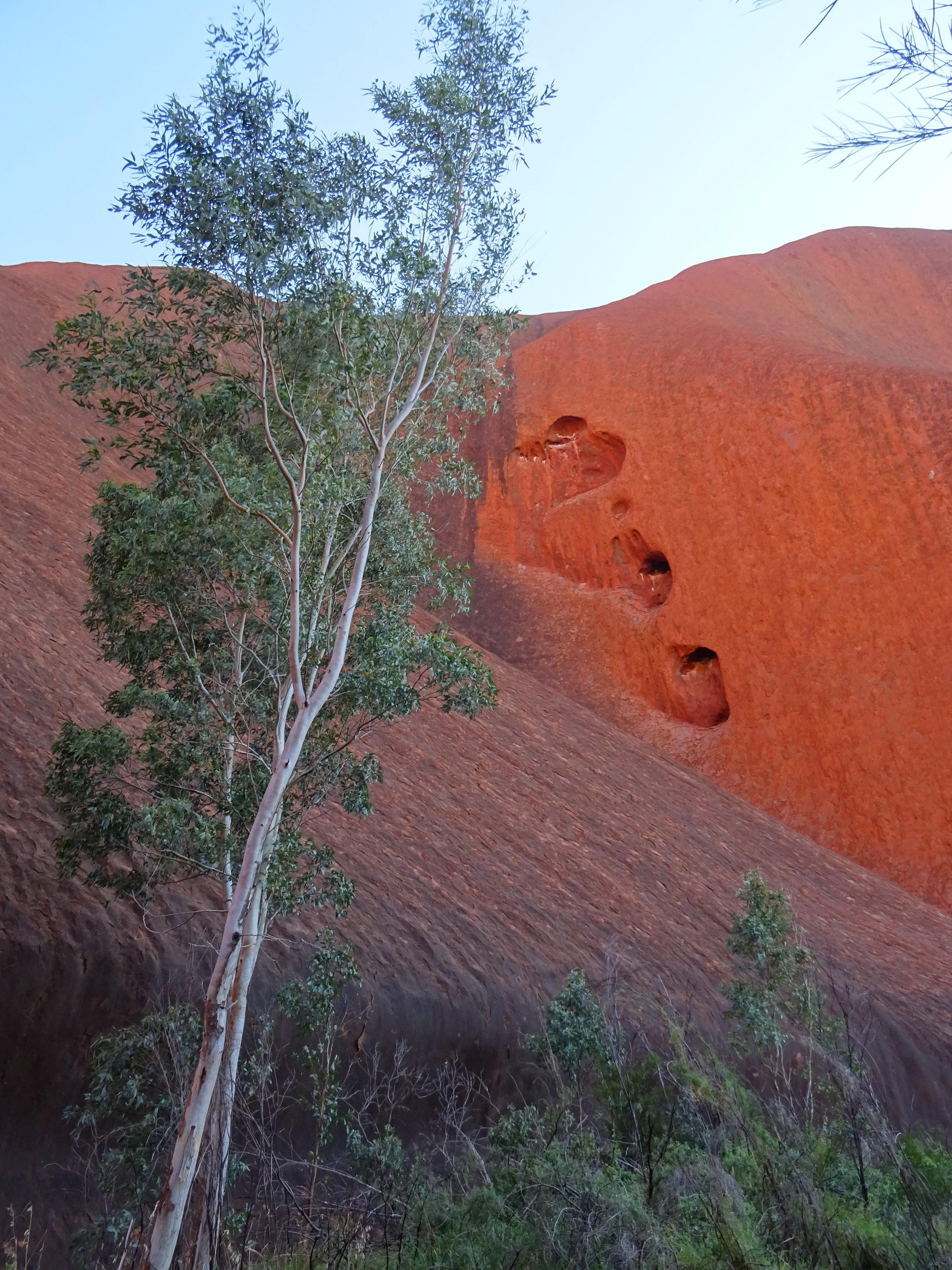 Uluru DSC02715 NT.JPG