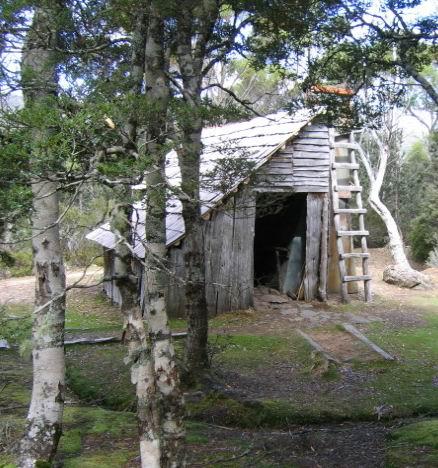Tassie Hike 105 Meston Hut.jpg