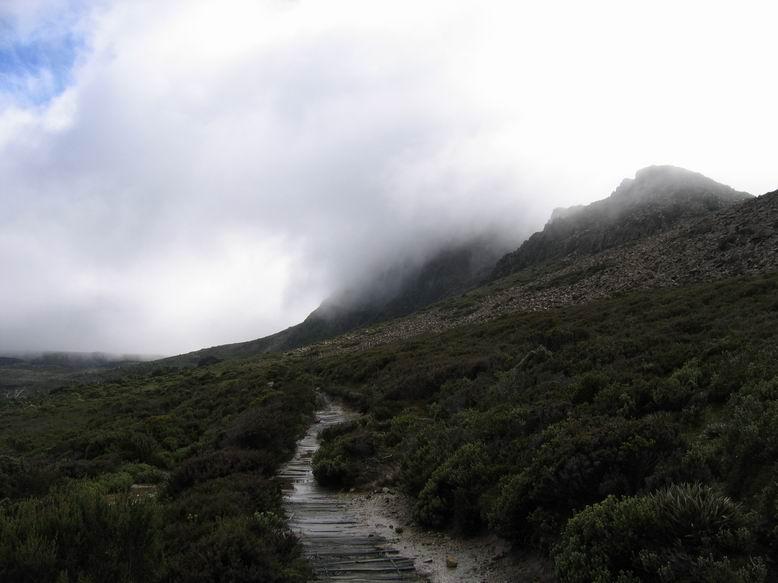 Tassie Hike 226.jpg