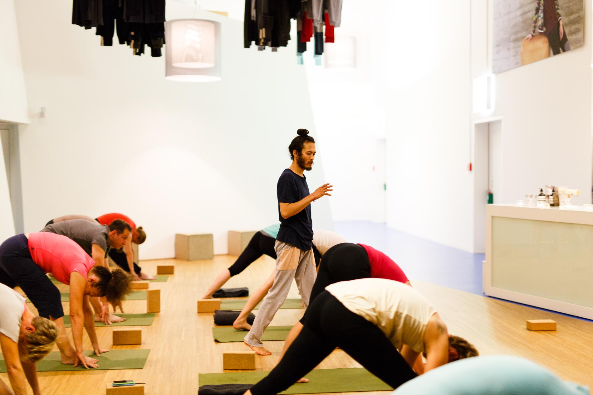 yoga david suivez lola fred2