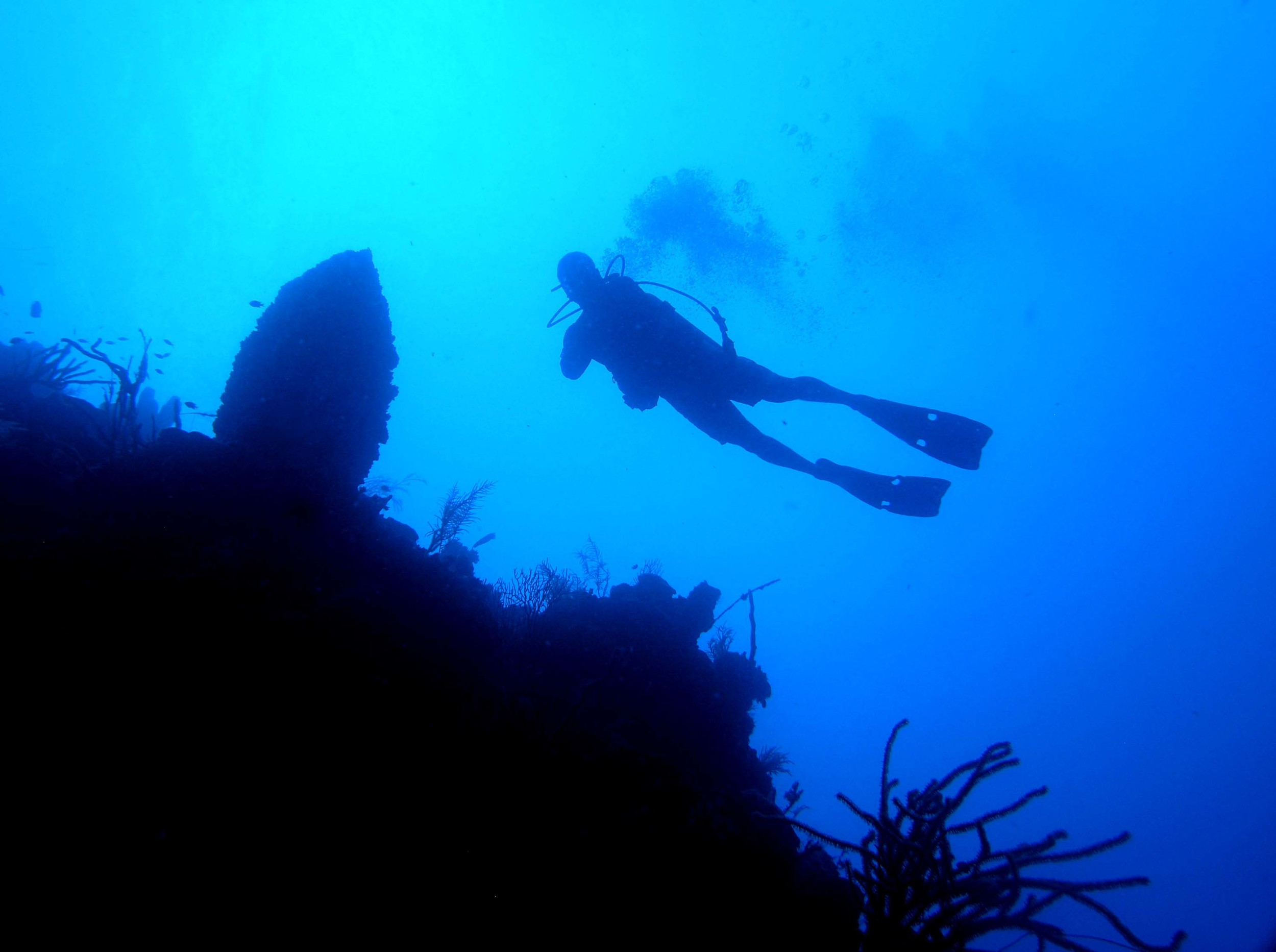 Alvin Jackson, Wall diving, West End, Roatan