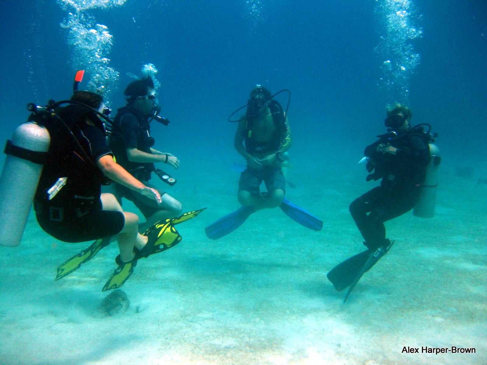 PADI Open Water course with Native Sons