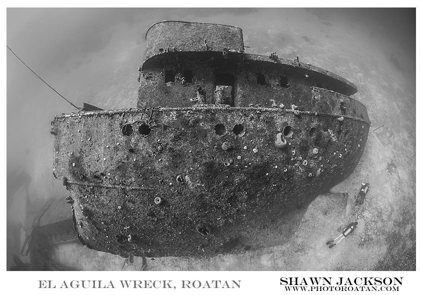 Aguila Wreck