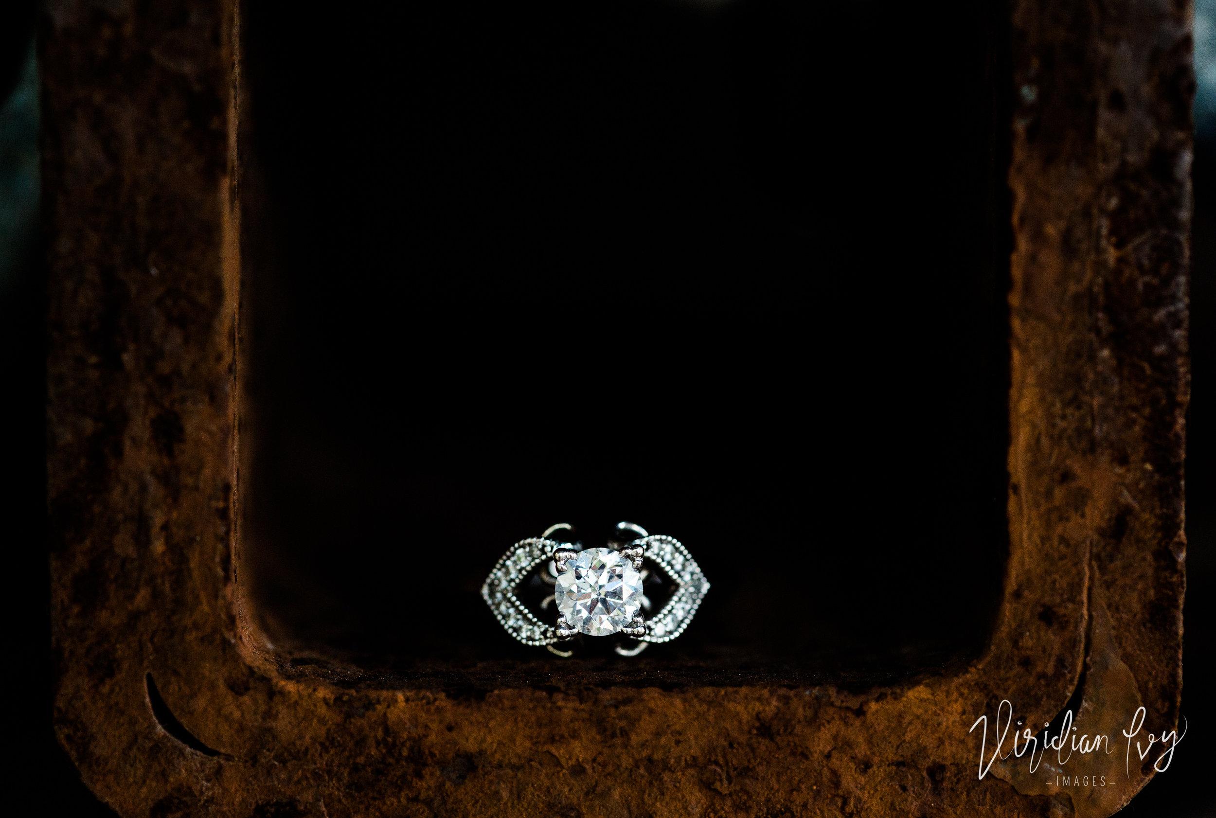 Viridian Ivy Images | SE Michigan Engagement Photographer| Ohio Wedding Photographer