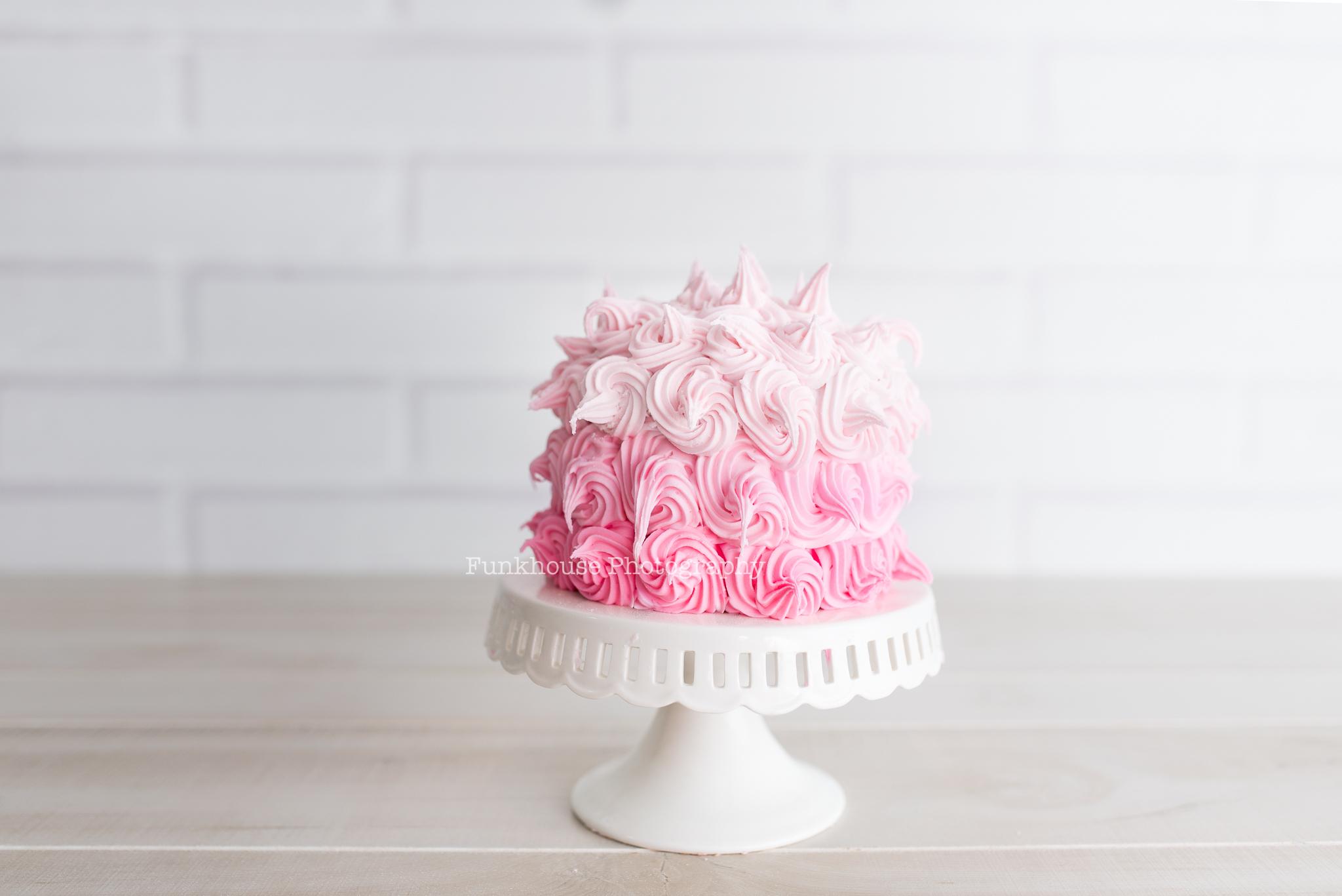 smash cake 1.jpg