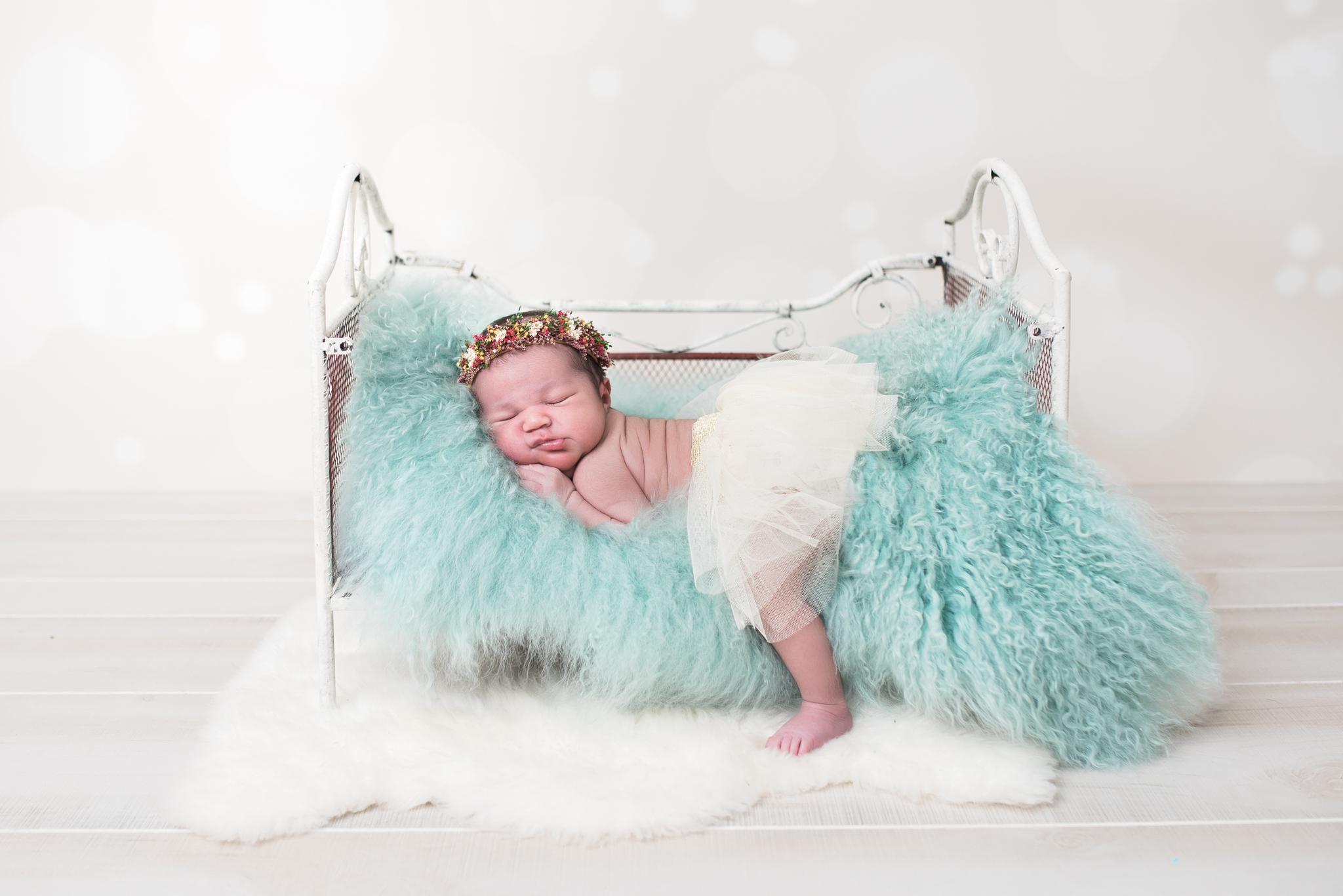 washington-dc-newborn-photographer.jpg