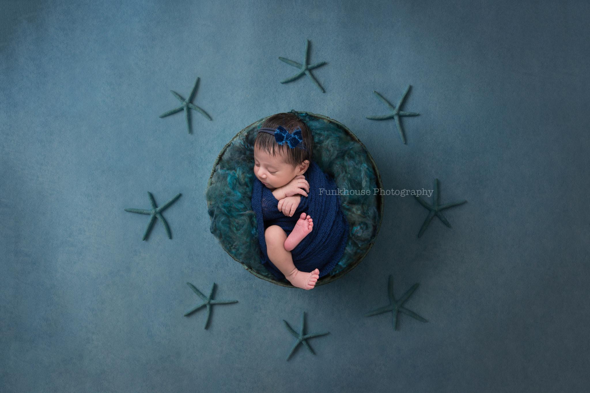 starfish c.jpg