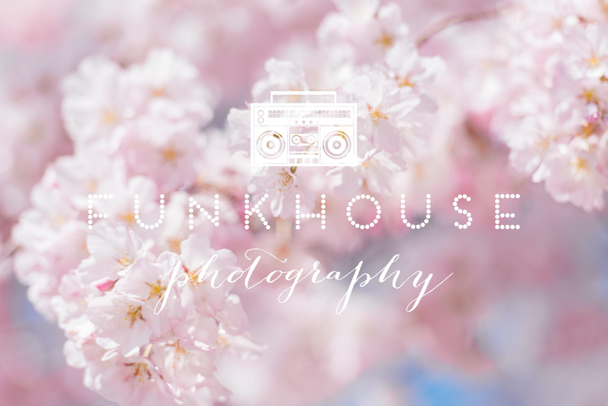 dc-cherry-blossom-photographer